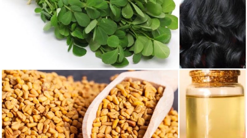 Fenugreek Seeds For Hair Regrowth & As a Natural Conditioner- An Ancient Indian Technique