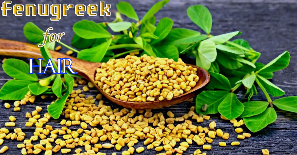 Best Ways To Use Fenugreek Seeds For Hair Growth | Hair Conditioner | An Ancient Indian Technique