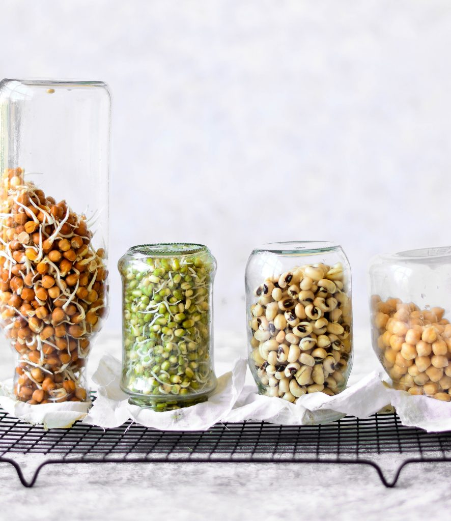 3 Simple Methods To Grow Sprouts At Home Like a Pro